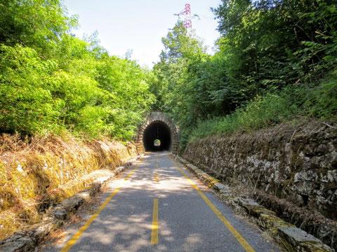 Zurück geht es auf der historischen Eisenbahnstrecke auf dem Alpe-Adria-Radweg nach Tarvis