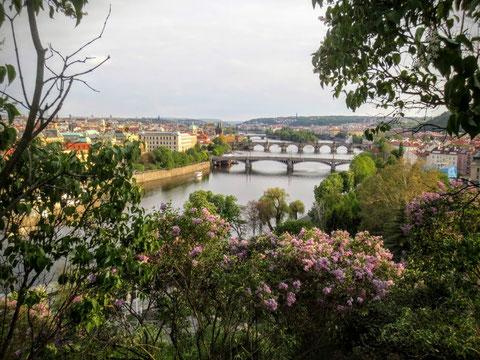 Prag, Moldau, Karlsbrücke