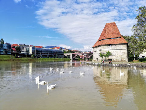 Der 1555 erbaute Wasserturm liegt direkt an der Drau und beherbergt heute eine moderne Vinothek