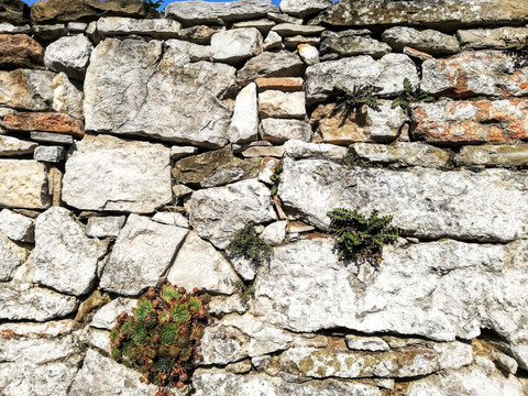 Trockensteinmauer im Karst