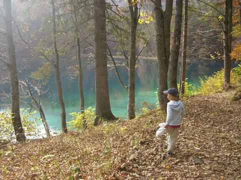 Weissenfelser Seen, Laghi di Fusine, Alpe Adria Trail