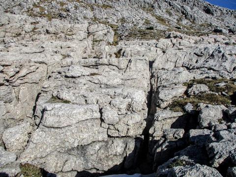 Karst, Karnische Alpen