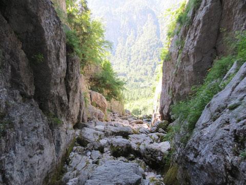 Die ersten Meter fließt die junge Soca im Sommer 2013 unterirdisch...