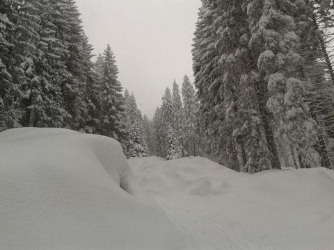 Skitour Luschariberg, Monte Lussari, Tarvis, Pilgerweg, Büßerweg