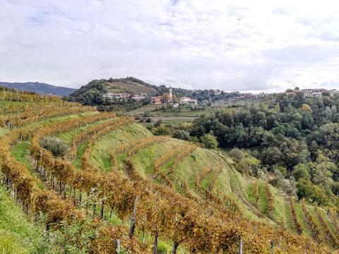 Šmartno, Goriska Brda, wandern, Wanderwege