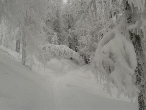 Skitour Luschariberg, Monte Lussari, Tarvis, Pilgerweg, Büßerweg, Winter