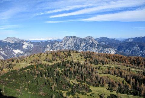 Alm, Julische Alpen
