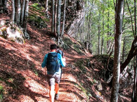 Val Alba, Moggio, Wandern, Karnische Alpen