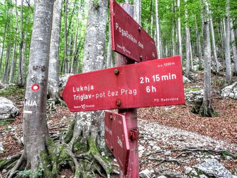 Wegweiser, Julische Alpen, Triglav, Alpenverein