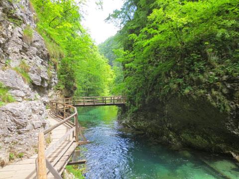 Vintgarklamm, Vintgar, Rotweinklamm, Julische Alpen, Bled
