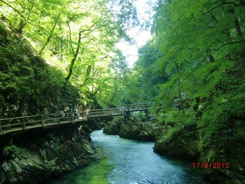 WVintgarklamm, Vintgar, Rotweinklamm, Julische Alpen, Bled