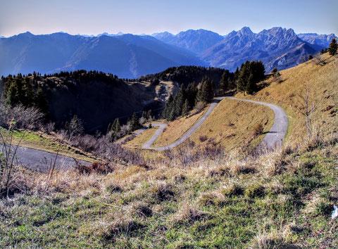 Monte Zoncolan, Liariis, Carnia, Giro d´Italia