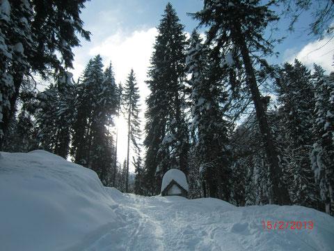 Luschariberg, Pilgerweg, Büßerweg, Skitour, Tarvis, Lussari