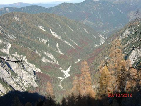 Zelenci, Kranjska Gora, Save Ursprung