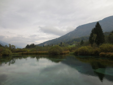 Zelenci, Kranjska Gora, Save Ursprung, größter Fluss Kroatiens, Sloweniens