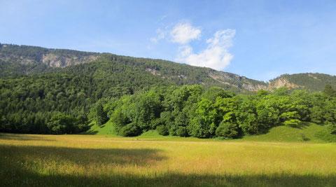 Die Weinitzen, eine außergewöhnliche Kulturlandschaft und Naturparadies am Fuße des Dobratsch
