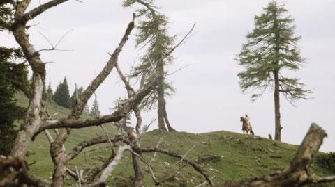 Aloisiasteig, Dobratsch, Villacher Alpe, wandern