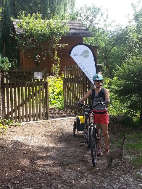 vélo à assistance électrique VAE  pour courses alimentaires