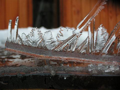 les gravures du bain nordique gelé
