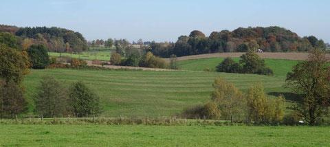 Der Rotmilan braucht strukturreiche Landschaften (hier bei Much; Bild: D. Steinwarz)