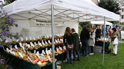 Sortenvielfalt bei Apfel und Birne