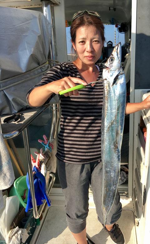 奥様!初太刀魚で今日一!F5(^^♪