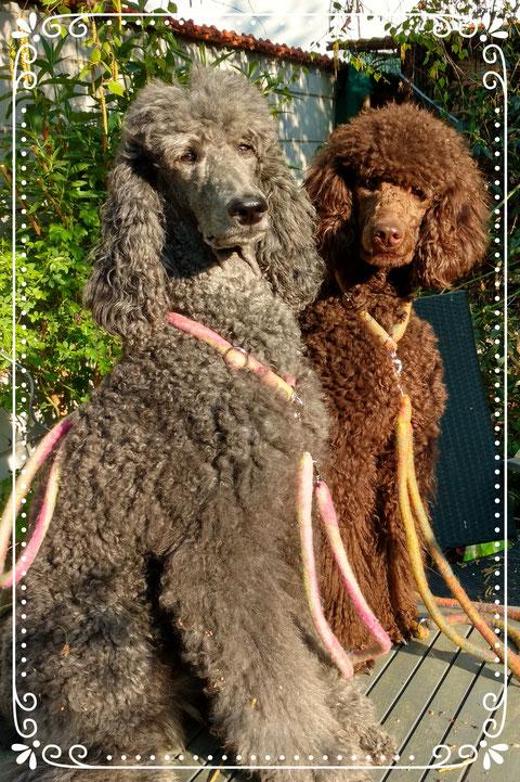 Lola und Ayoomi mit den neuen federleichten Filzleinen
