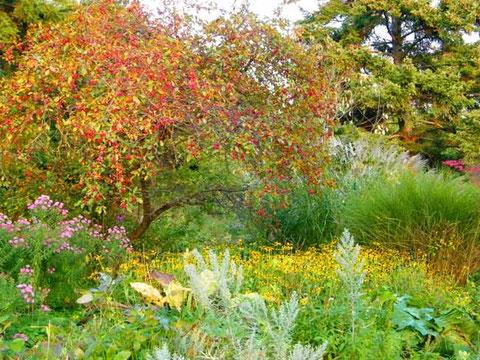 Der Stadtgarten an der Vegesacker Weserpromenade im Herbst