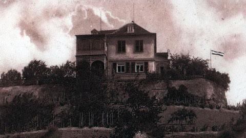 Steinauerberg