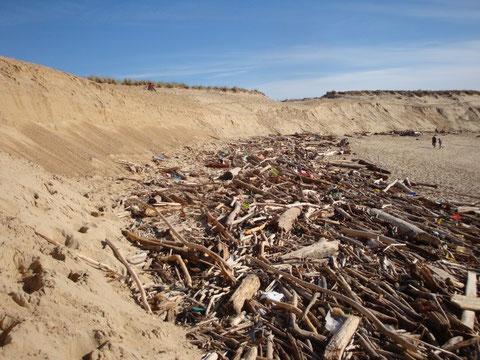 Laisse de mer à grande échelle après 3 jours de tempête à Capbreton (40) - FredG