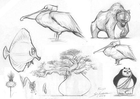 arbre-plantes-baobab-fleur-ours-pelican