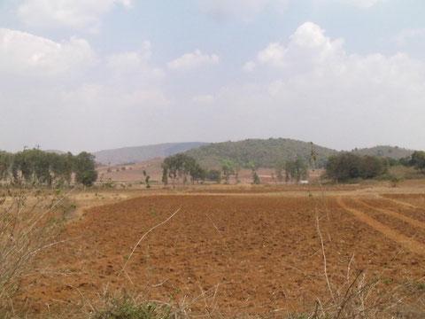 Bhejaの駅に向かう途中の畑