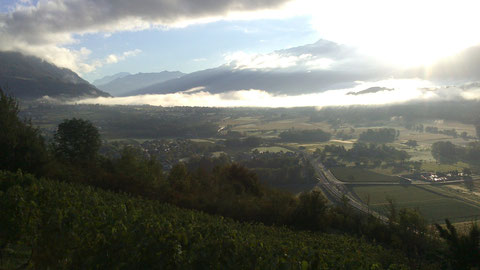 Lever de soleil un jour de vendange sur le coteau de la mort (Mont-Blanc et Grand-Arc en fond)