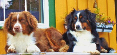 Ylva und Anouk (rechts)