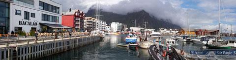 Svolvær Hafen