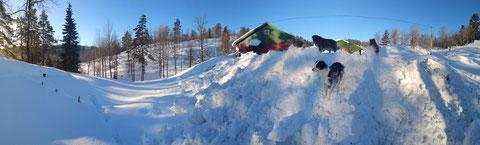 Schneerampe hinter dem Schaf- und Pferdestall