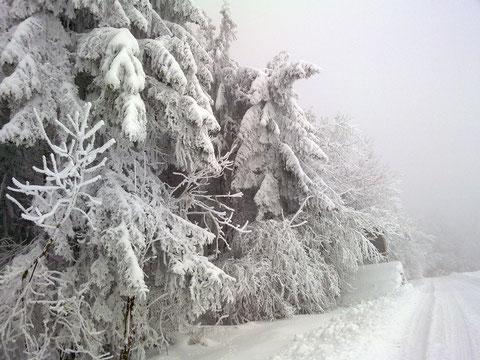 Auch der Winter hat schöne Seiten
