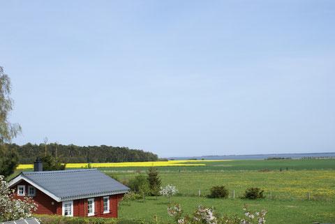 Ferienhaus im Schwedenstil mit Boddenblick
