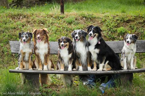 v.l.n.r.: Kate, Hurley, Jenna & Charlie, Leela, Libby