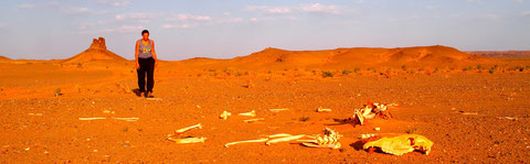A la rencontre du désert de Gobi