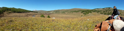 La Mongolie une terre de liberté