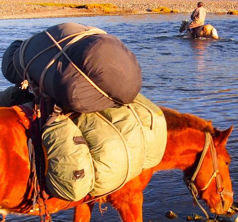 Cheval de bât sur la vallée d' Orkhon