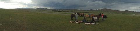 Seller les chevaux