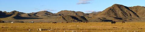 """La plaine rassurante proche du village relais de steppe à """"Tsengel"""""""