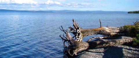 Le lac Khovsgol une mer intérieur