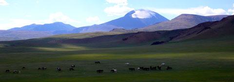 Camp Tsaatan nord ouest Khovsgol Mongolie