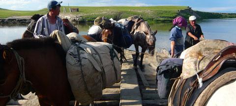 Passage de bac à cheval sur les rivières du nord ouest Khovsgol avant les plateaux du territoire des Tsaatan