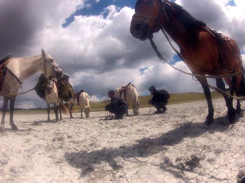 Trek trappeur à cheval Mongolie