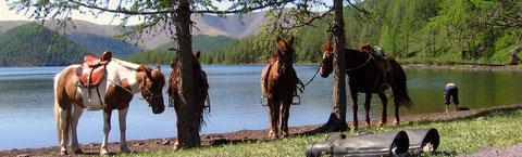 Une pause rafraichissante sur la région des huit lacs (Naiman nuur)