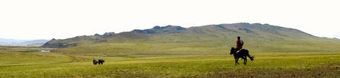 La grande steppe des vallées du Khangai